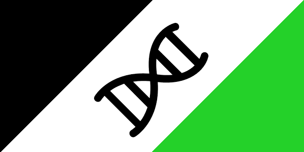 Gengineer Republic Flag